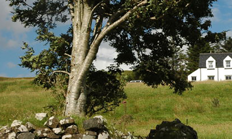 Tote-campsite-camping-accommodation-skeabost-skye
